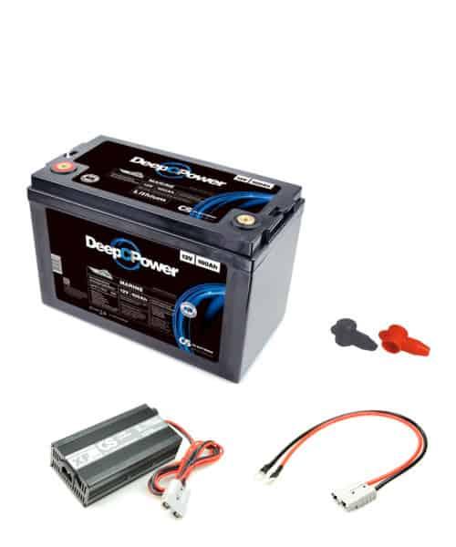 Batterie set mi 100AH LIFEPO und ladegerät 20A